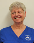 Judy Mortimer, support team at Haygate Veterinary Centre