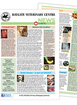 Haygate news article image